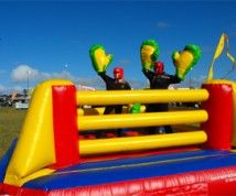 Hire Jumping Castle in Sydney at affordable cost.  To know more : http://ashjumpingcastles.com.au/