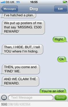 45 Funny Text Jokes for Adults 2 Funny Dog Texts, Cute Texts, Funny Jokes, Humor Texts, It's Funny, Hilarious Texts, Hilarious Animals, 9gag Funny, Memes Humor