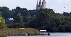The body of the 2-year-old boy was found 'intact' in the 'immediate area' of the alligator attack at a Disney World resort — read more