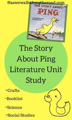 Literature unit stud