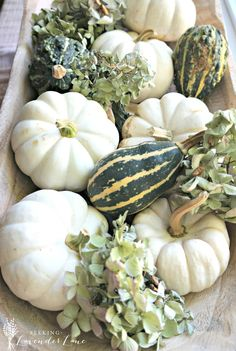 white-pumpkins-dough-bowl1.jpg 1,863×2,777 pixels