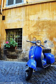 Ride on a (BLUE) vespa in Italy to a cute little cafe and eat canolis with my love. Lambretta, Piaggio Vespa, Motor Scooters, Vespa Scooters, Mobility Scooters, Fiat 500, Blue Feed, Motos Vespa, Classic Vespa