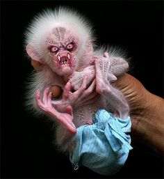 1000+ images about Scary on Pinterest | Scary animals ...
