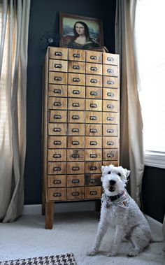 Ana White | Build a Card Catalog Cabinet - Feature from Decor and the Dog | Free and Easy DIY Project and Furniture Plans