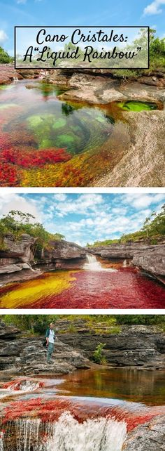"""Here's why the Caño Cristales in Colombia is called a """"Liquid Rainbow"""" Mauritius Travel, Mauritius Island, Mauritius Honeymoon, Amazing Places On Earth, Beautiful Places, Places To Travel, Places To See, Colombia Travel, Destinations"""