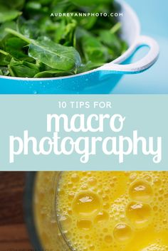 Are you interested in macro photography? Here are ten tips to help you with your macro images!