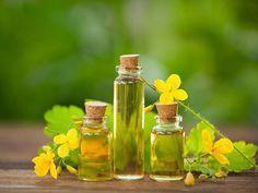 Seznam - najdu tam, co neznám Herb Garden, Home And Garden, Korn, Natural Medicine, Life Is Good, Detox, Glass Vase, Herbs, Bottle