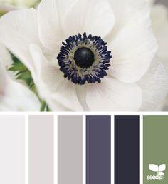 flora hues | design seeds | Bloglovin'