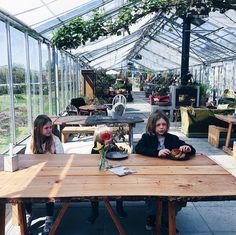 Greenhouse cafe outside of Copenhagen called Grennesminde Gartneri