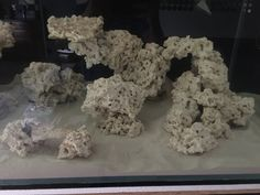 Tips and Tricks on Creating Amazing Aquascapes - Page 50 - Reef Central Online Community