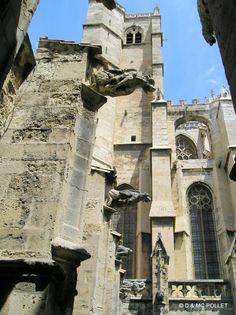 07/2005 Cathédrale de Narbonne