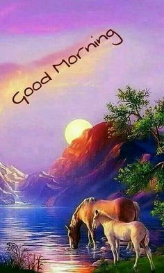 Good Morning sister and all.have a beautiful day,God bless and keep you safe xxx