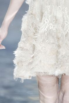 details :: Elie Saab Spring 2010 Couture Collection by Carla Steele