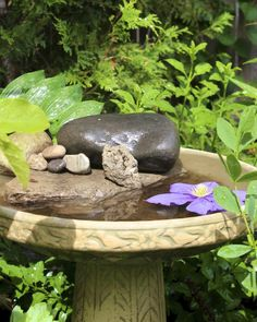 Attracting butterflies to your garden with flowers? Add a butterfly bath so they can quench their thirst