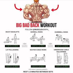 Want a BIGGER Back? Try this workout LIKE/SAVE IT if you found this useful. FOLLOW @musclemorph_ for more exercise & nutrition tips . TAG A GYM BUDDY . ✳Enhance your progress with @musclemorph_ Supplements ➡MuscleMorphSupps.com #MuscleMorph via ✨ @padgram ✨(http://dl.padgram.com)