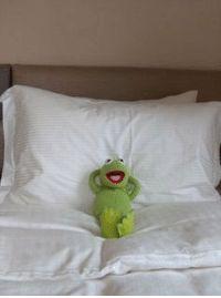 Kermit The Frog Meme, Funny Kermit Memes, Cute Memes, Mood Wallpaper, Disney Wallpaper, Meme Pictures, Reaction Pictures, Sapo Kermit, Funny Billboards