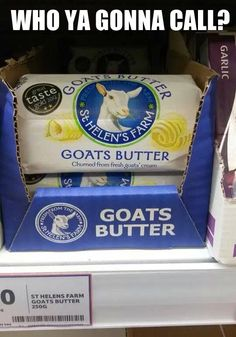 Who ya gonna call? Ok this made me laugh way too hard.