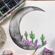 Crystals, cacti, & the Moon ✨ A | WEBSTA - Instagram Analytics