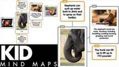 We are teachers! Kid-Mind-Maps