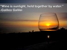 """Wine Quote.  """"Wine is sunlight, held together by water.""""  ~ Galileo Galilei"""