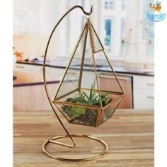 HappyShappy - India's Own Social Commerce Platform Gifts For Fiance, Gifts For Him, Plant Hanger, Personalized Gifts, Plants, Ideas, Decor, Gifts For Groom, Customized Gifts
