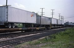 7/7/84 and were taken in Dolton, IL.