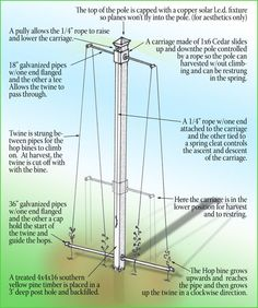 Hop trellis design... have been playing with hops cultivation for about 20 years now!: