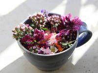 Léčivé květy z vlastní zahrady do čaje i do salátu