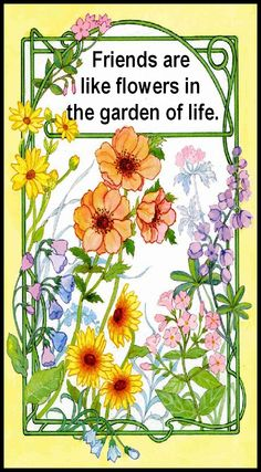 friends are flowers in the garden of life friends are the flowers in the garden of life citaten