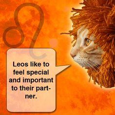 .Sun in Leo