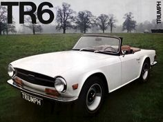 Triumph TR6 I would drive one of these!