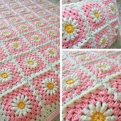 Pink (shasta) daisy blanket!  Inspiration only - yellow center, white daisy, pink background with final round in white.