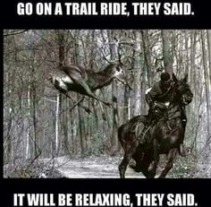 Not sure who was more spooked in this picture, the horse, the buck or the rider! (Daguet et le cerf de chasse, le 31 mars lors de sa dernière chasse) Funny Horse Memes, Funny Horse Pictures, Funny Horses, Funny Animals, Cute Animals, Horse Humor, Hunter Jumper, Equestrian Problems, Equestrian Quotes