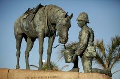 Our famous Horse Memorial Statue.    Amble along the 5km Donkin Heritage Trail which links 51 places of historical interest in the old Hill area of central Port Elizabeth.