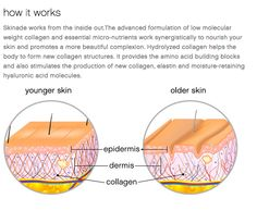 """@skinade: HOW DOES SKINADE WORK? #skincare drink #AntiAgeing  http://skinade.com/how-it-works  "" @TotalBodyCareUK PearlPharmacy"