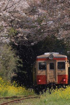 のぞみ309号 @gfs15kai5 ヨシムラさんに便乗~。 『春の雪』 列車にピントは合っていませんが(笑)。