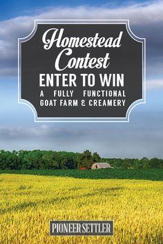 Organic farm essay contest