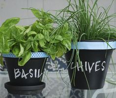 Chalkboard Planters - Cool Chalkboard Paint Ideas, http://hative.com/cool-chalkboard-paint-ideas/,