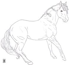 Horse Coloring Pages Free Printable