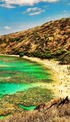Snorkel at Hanauma Bay, Oahu in Hawaii! Click through to see 27 places you have to visit in Hawaii!
