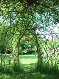 a lovely green space. inside a willow dome created by Willowpool Designs