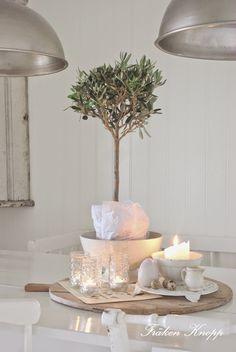 Fröken Knopp : Vackra Olivträd...