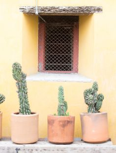 Mexico Travel Inspiration - HOTEL EDITION: CHAYA B&B BOUTIQUE, MEXICO CITY