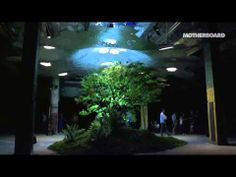 Motherboard Minute: Low Line - http://notexactlythenews.com/2014/01/12/docudrama/motherboard-minute-low-line/