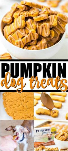 Pumpkin Dog Treats Homade Dog Treats, Frozen Dog Treats, Homemade Dog Food, Healthy Dog Treats, Puppy Treats, Homemade Dog Biscuits, Diy Dog Treats, Dog Cookie Recipes, Dog Biscuit Recipes