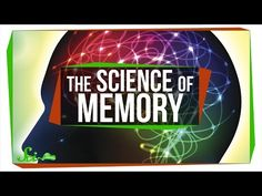Video of the Day: Memory 12-27-16 - TheSmarterSociety
