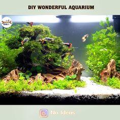 Aquarium Garden, Aquarium Aquascape, Aquarium Landscape, Aquarium Setup, Nano Aquarium, Live Aquarium, Aquarium Ideas, Aquarium Design, Aquarium Fish Tank