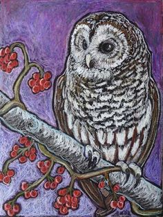 """Daily Paintworks - """"Barred Owl"""" - Original Fine Art for Sale - © Ande Hall Oil Pastel Paintings, Oil Pastel Art, Owl Paintings, Pastel Paper, Owl Artwork, Chalk Pastels, Oil Pastels, Barred Owl, Bird Art"""