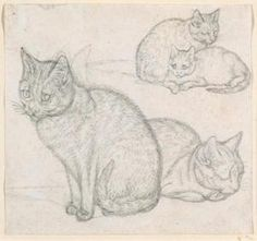 Mind, Gottfried - a double sketch of two cats