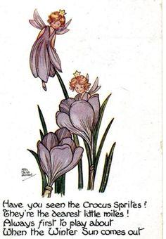 H.G.C. MARSH LAMBERT postcard | eBay